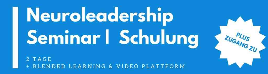 neuroleadership seminar   schulung