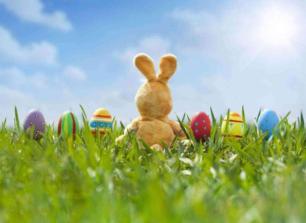 Die Quality Redaktion wünscht ein Frohes Osterfest